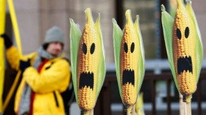Anti-GMO protest. Click to enlarge