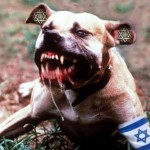 """Israel must be like a mad dog, too dangerous to bother."" — Israeli General Moshe Dayan"