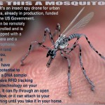 Big Brother Keeps Bringing It