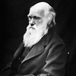 Charles Darwin – Stock Picker