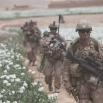 Afghanistan's poppy fields produce 90% of the world's opium. Is this why Obama wants nearly ten thousand U.S. troops to remain? To continue to guard the lucrative drugs trade? Click to enlarge