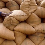Zimbabwe imports maize to stave off hunger