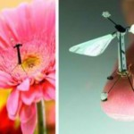 Nature inspiring designs for new micro drones. Click to enlarge