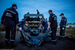 Rescue workers are pictured above at the MH17 crash site in Grabovo, eastern Ukraine, moving bodies onto trucks. Click to enlarge
