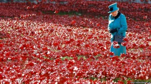Queen Elizabeth II inspects the poppies. Click to enlarge