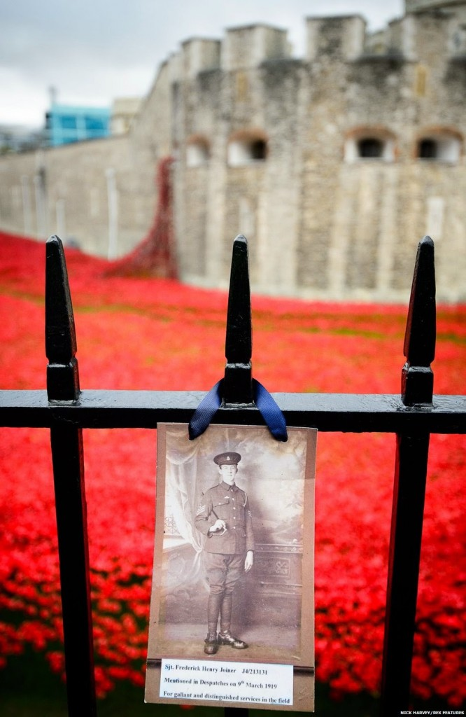 Poppy display, Tower of London. Click to enlarge