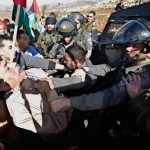 Palestinian Minister Ziad Abu Ein is confronted by Israeli security forces.