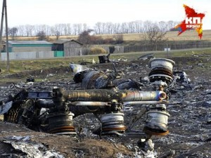 The Ukrainian authorities are using fakes to put the blame for the collapse of the Malaysian Boeing on opolchenye. Clcik to enlarge