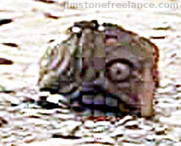 Head of a statue on Martian surface?