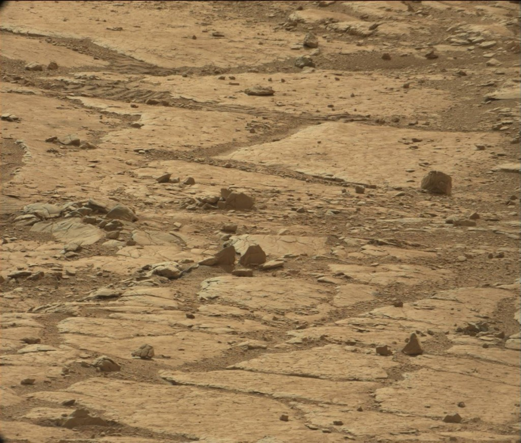 Martian suface. The statue-head-like anomaly appears midway down the right hand side. Click to enlarge