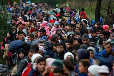 Migrants cross the Hungary-Croatian border. Click to enlarge