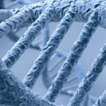 DNA markers link season of birth and allergy risk