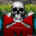 Rats' intestines destroyed just 90 days after being fed Monsanto GMO corn