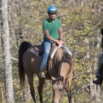 Weiner on horse at The Recovery Ranch rehab centre. Click to enlarge