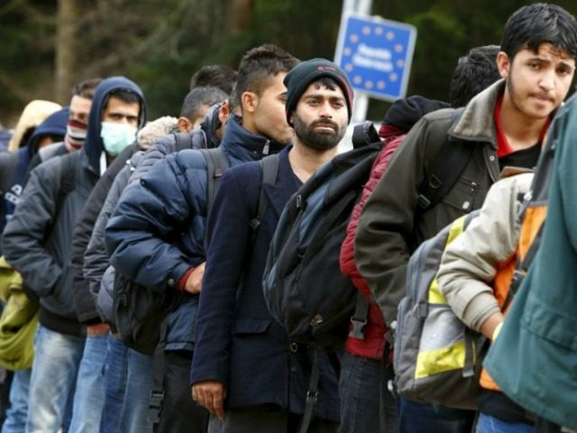 Migrants queue at Austrian-German border. Click to enlarge