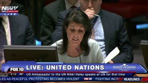 Nikki Haley speaks to the UN