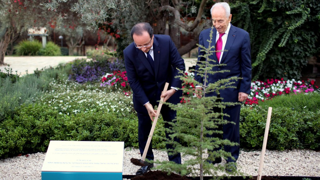 Israeli President Shimon Peres, right, and French President Francois Hollande, plant a Cedar tree during a welcome ceremony for Hollande at the president's residence in Jerusalem, Sunday, Nov. 17, 2013. (AP Photo/Abir Sultan, Pool) Click to enlarge