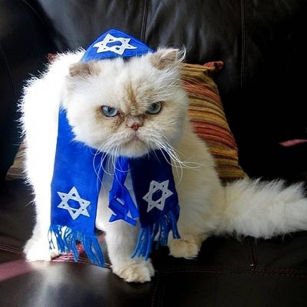 Zionist pussy