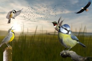 North America's Bird Population Is Collapsing – Nearly 3 Billion Birds Have Been Wiped Out Since 1970