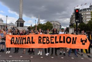 Extinction Rebellion: Loving Animals to Death