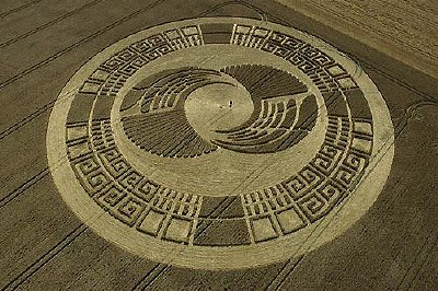 The same crop circle the following day, billed as 'Crop circle of the Year, note the details that have been added overnight. Photo: Stuart Alexander