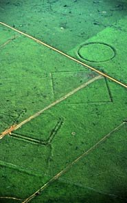 Amazon earthworks seen from the air