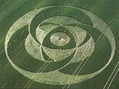 Crop circle that appeared near Liddington Castle, Wiltshire, in July 2001. Photo Steve Alexander