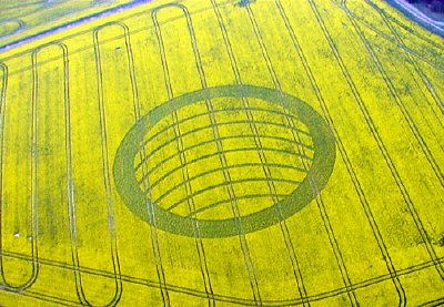 An aerial view of the crop circle.