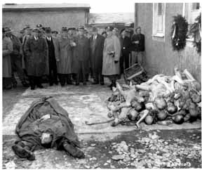 American dignitaries inspect typhus victims at Buchenwald camp (from Irving collection)