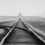 Railway tracks leading to the entrance Auschwitz. Click to enlarge