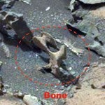Images taken by NASA's Curiosity Rover. Are these bone fragments on the surface of Mars? Click to enlarge