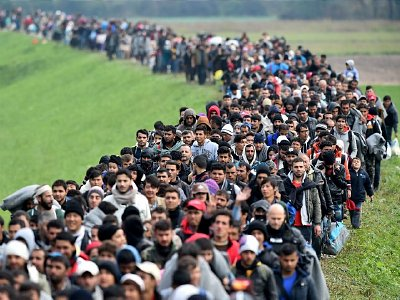 Migrants cross into Slovenia on their way to Germany. Click to enlarge
